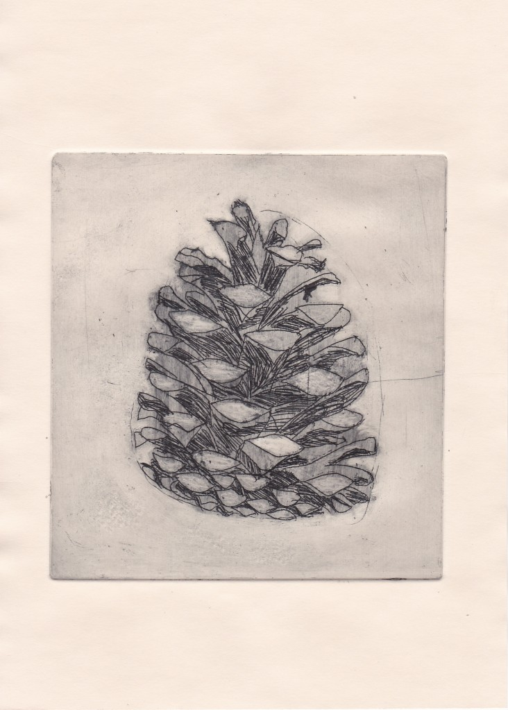 Pine cone etching